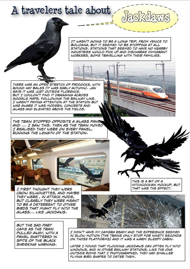 A comic strip version of a jackdaw disaster